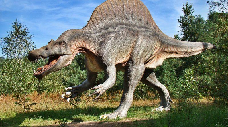 Spotkania z dinozaurami: Krasiejów